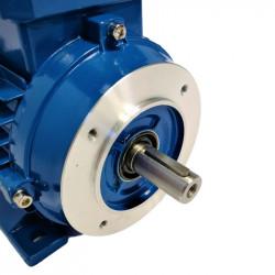Moteur électrique triphasé 0.09 kw - 3000 Tr/min - B34 - 230/400V - Cemer