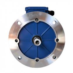 Moteur électrique triphasé 0.55kw - 1000tr/min - B5 - 230/400v - Cemer