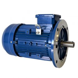 Moteur électrique Triphasé 0.18Kw - 1000tr/min - B5 - 230/400V - Cemer