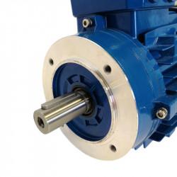 Moteur électrique triphasé 0.37 kw - 3000Tr/min - 63B14 - 230/400V - Cemer