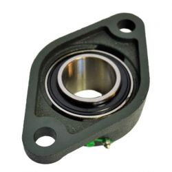 Palier UCFL 206 applique fonte 2 trous -Roulement Autoaligneur pour arbre de 30mm