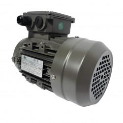 MOTEUR ÉLECTRIQUE TRIPHASÉ 1.5 KW - 230/400V - 3000 TR/MIN