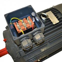 Moteur électrique 22kw triphasé 400/690V 975Tr/min Fixation à pattes B3
